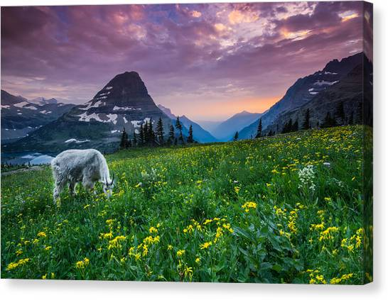 Glacier National Park Canvas Print - Glacier National Park 4 by Larry Marshall