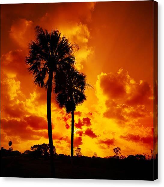 Glades Sunset Canvas Print