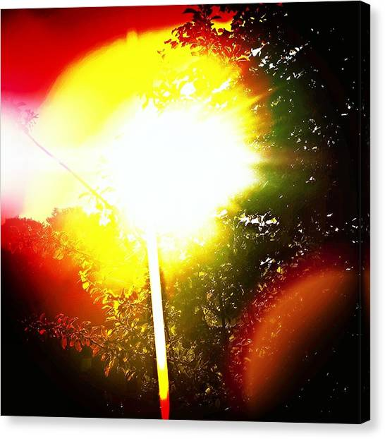 Beach Sunrises Canvas Print - Glare by Jason Michael Roust