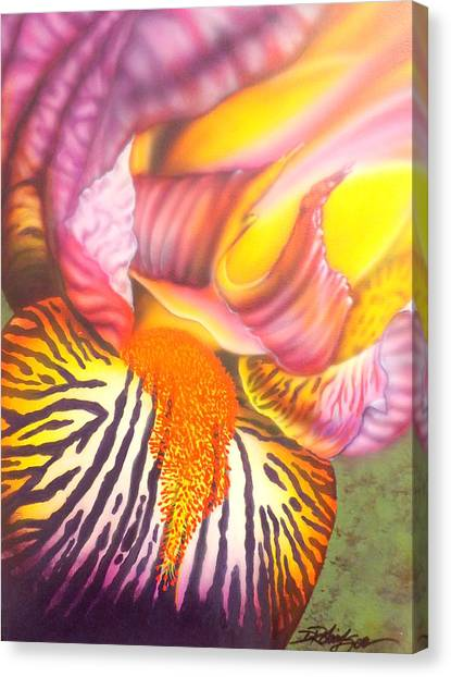 Glavis Iris Canvas Print