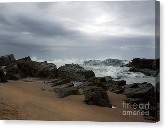 Canvas Print featuring the photograph Anticipation by Glenda Wright