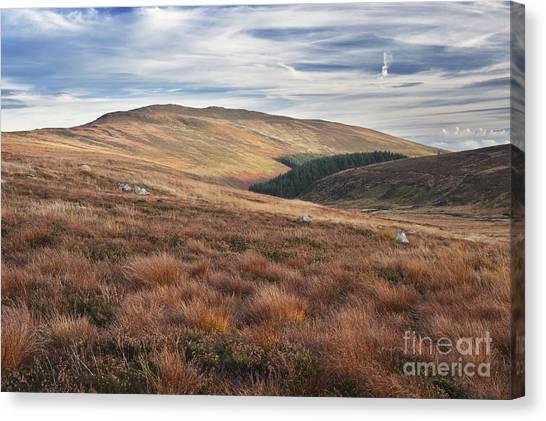 Glenmacnass 4 Canvas Print by Michael David Murphy