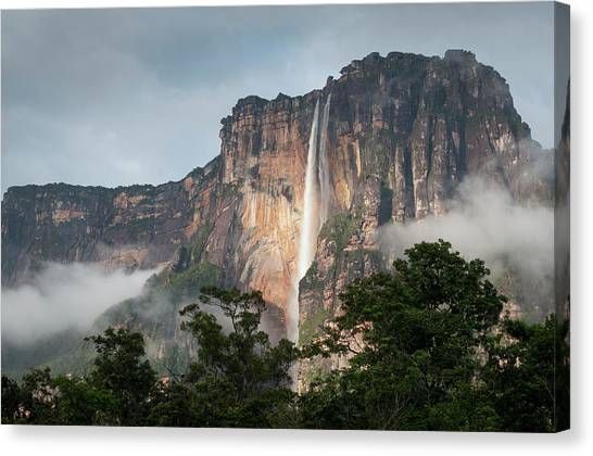 Angel Falls Canvas Print - Global Rivers Project, South America by Chris Linder