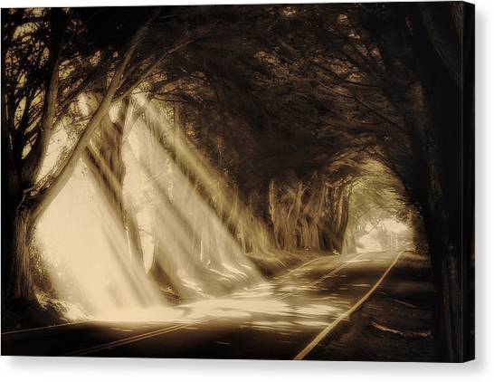 Glory Rays Canvas Print