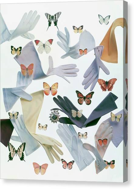 Gloves And Butterflies Canvas Print