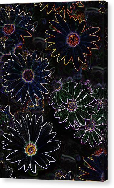 Glowing Daisies Canvas Print