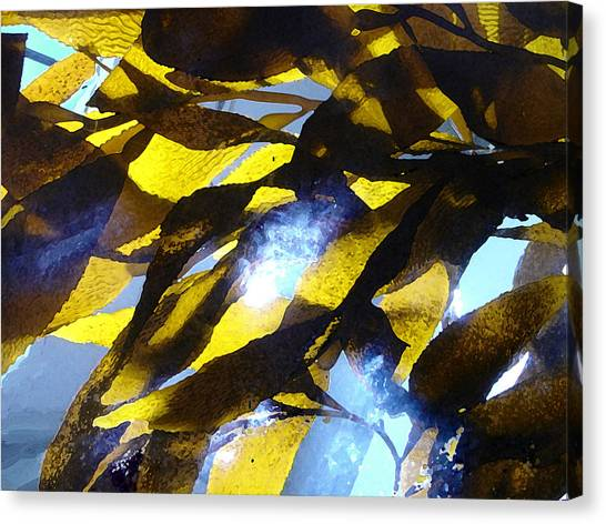 Saltwater Life Canvas Print - Glowing Kelp by Michelle Ivanovich