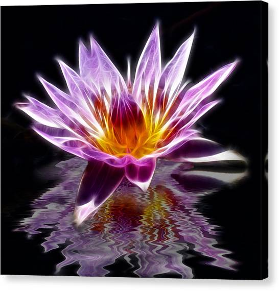 Glowing Lilly Flower Canvas Print