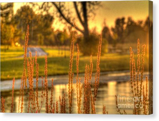 Glowing Plants In A Pond Canvas Print