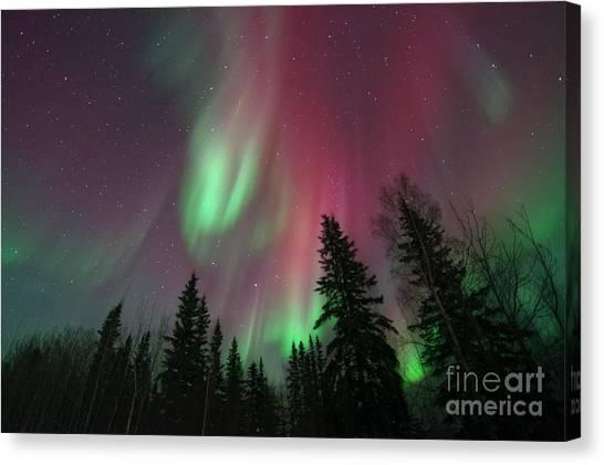 Yukon Canvas Print - Glowing Skies by Priska Wettstein