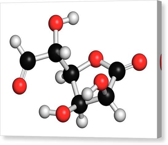 Glucuronolactone Molecule Canvas Print by Molekuul
