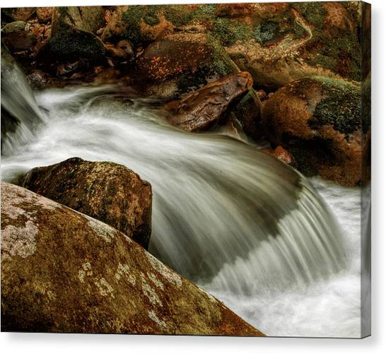 Go With The Flow Canvas Print by Dave Bosse