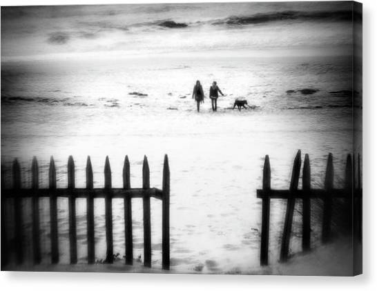 Dog Walking Canvas Print - Go With The Flow by Paulo Abrantes