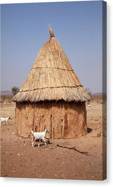 Goats And Hut In Himba Village, Opuwo Canvas Print by Jaynes Gallery