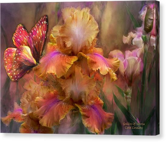 Irises Canvas Print - Goddess Of Sunrise by Carol Cavalaris