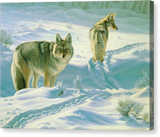Yellowstone Canvas Print - God's Dogs by Paul Krapf