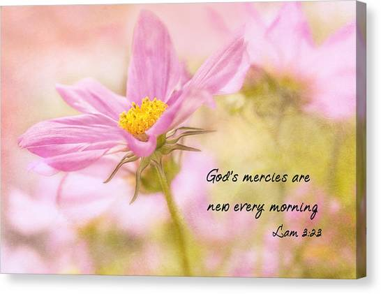 Canvas Print featuring the photograph God's Mercies by Mary Jo Allen