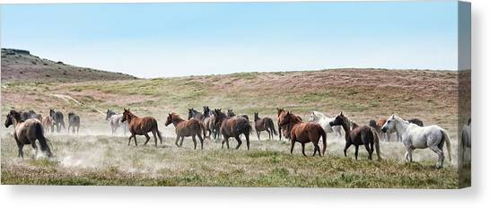 Going To Higher Ground Canvas Print by Gene Praag