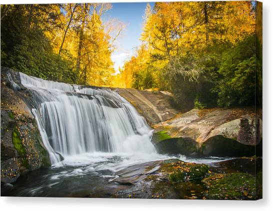 Pisgah National Forest Canvas Print - Gold Falls by Brian Young