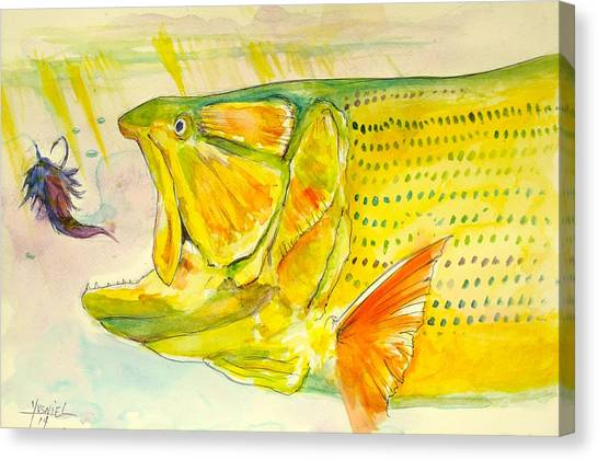 Bass Fishing Canvas Print - Feathers To Get Gold  by Yusniel Santos