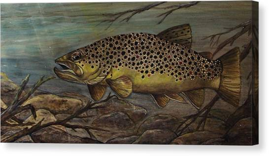 Golden Brown Canvas Print by Kathy Lovelace