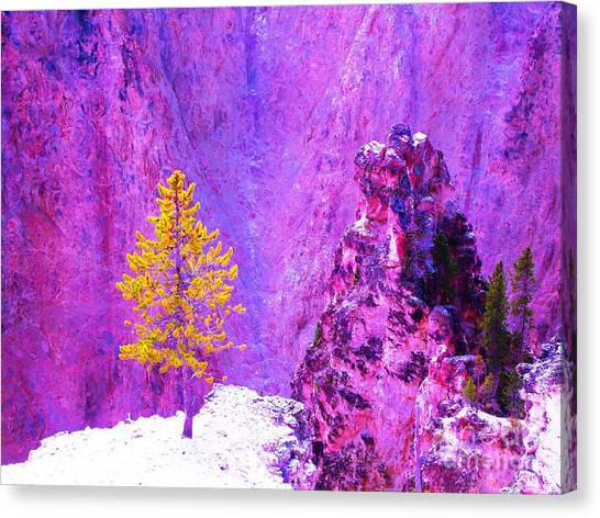 Golden Christmas In Yellowstone Canvas Print