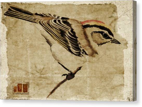 Simple Canvas Print - Golden-crowned Kinglet by Carol Leigh