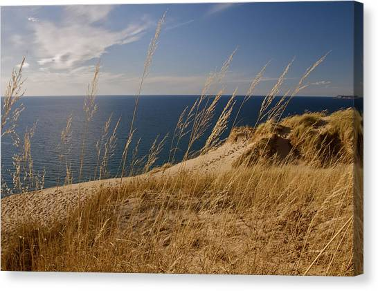 Golden Dune Grass On The Lake Canvas Print