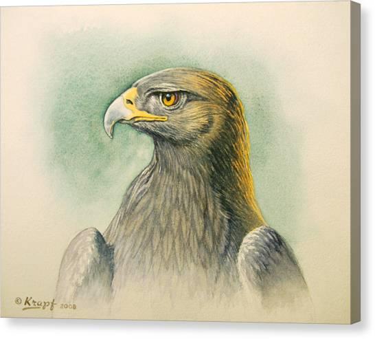 Golden Eagle Canvas Print - Golden Eagle Portrait by Paul Krapf