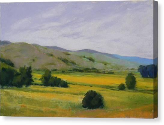 Golden Field II Canvas Print