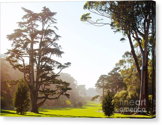 Golden Gate Park San Francisco Canvas Print