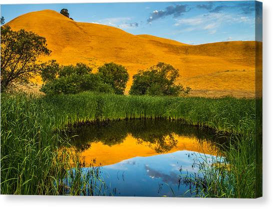 Contra Canvas Print - Golden Hill Reflection In Pond by Marc Crumpler