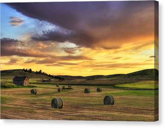 Inland Canvas Print - Golden Hour Farm by Mark Kiver