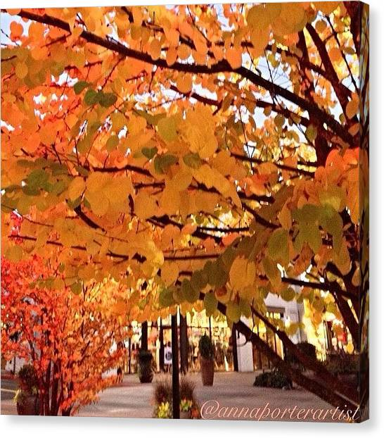 Autumn Leaves Canvas Print - Remembering Autumn by Anna Porter