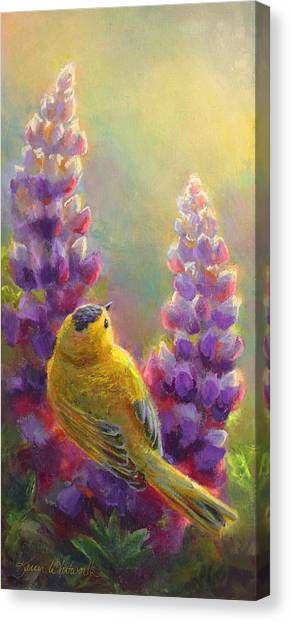 Golden Light 1 Wilsons Warbler And Lupine Canvas Print