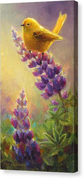 Warblers Canvas Print - Golden Light 2 Wilsons Warbler And Lupine by Karen Whitworth
