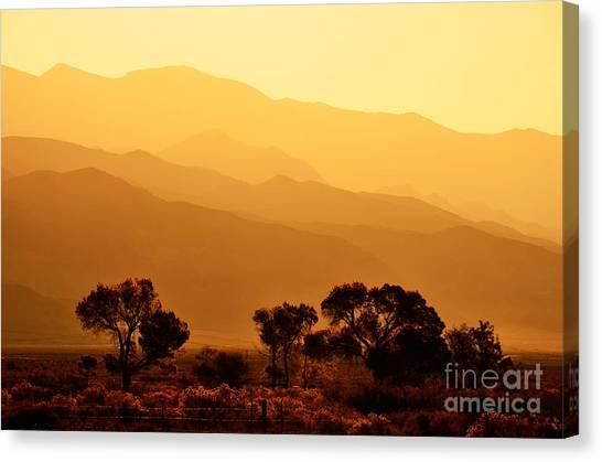 Golden Mountain Light Canvas Print