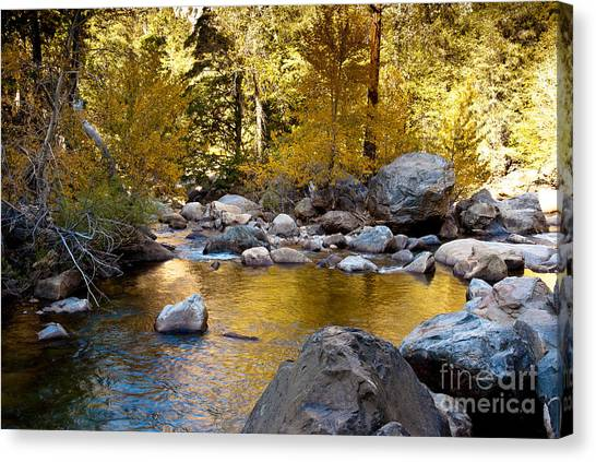 Golden Pool On Roaring River  1-7797 Canvas Print by Stephen Parker