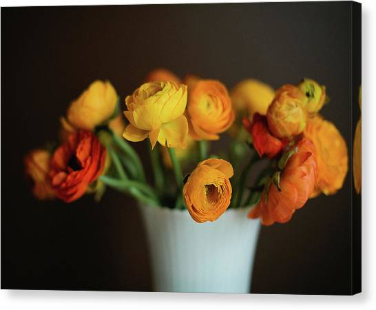 Vase Of Flowers Canvas Print - Golden Ranunculus by Melissa Deakin Photography