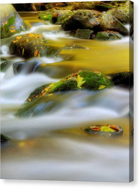 Golden Reflections Of Fall Canvas Print