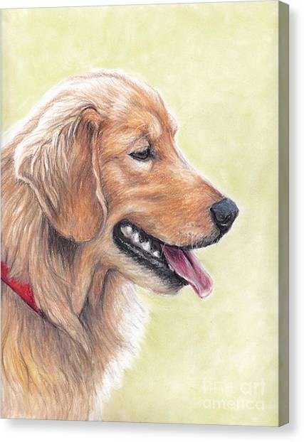 Golden Retriever Profile Canvas Print by Charlotte Yealey
