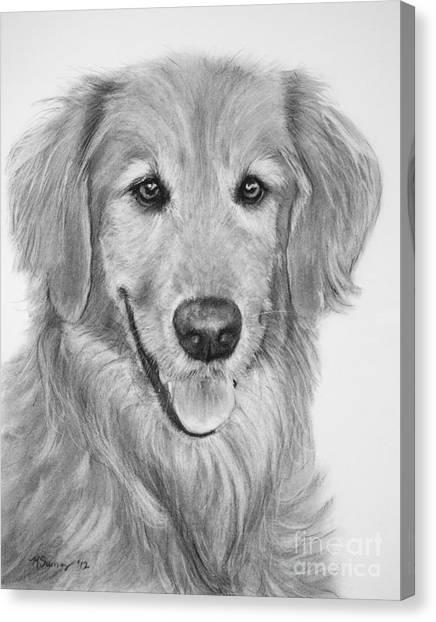 Golden Retriever Sketch Canvas Print