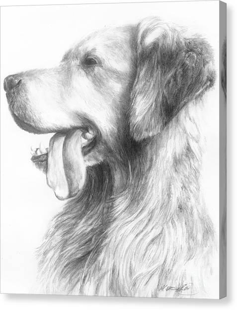 Golden Retriever Study Canvas Print