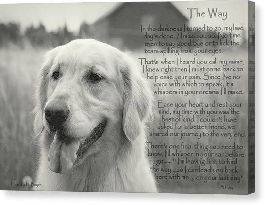 Golden Retriever The Way Canvas Print