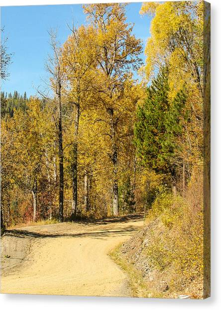 Golden Road 2 Canvas Print by Curtis Stein