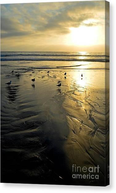 Golden Sandy Canvas Canvas Print