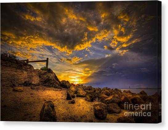 Oysters Canvas Print - Golden Shore by Marvin Spates