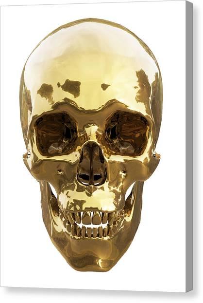 Jaws Canvas Print - Golden Skull by Vitaliy Gladkiy