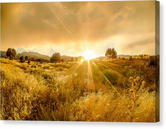 Golden Smoke Canvas Print