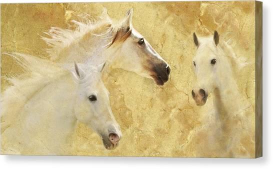 Golden Steeds Canvas Print